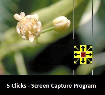 5 Clicks - Screen Capture Program